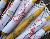 Hand dipped pure beeswax candle tapers Pine or Rose single or double