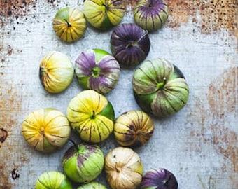 Heirloom Purple Tomatillo Seeds Vegetable Garden Organic Seed Non Gmo Salsa