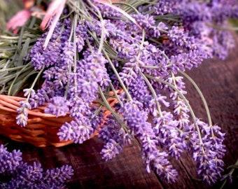 Heirloom Lavender Herb Flower Seed Garden Organic Non Gmo Vera English