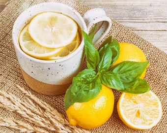 Heirloom Lemon Basil Herb Seed Garden Organic Non Gmo Container Gardening