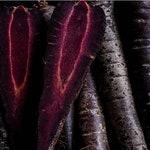 Heirloom Black Carrot Nebula Seeds Vegetable Garden Organic Seed Non Gmo Dark Purple