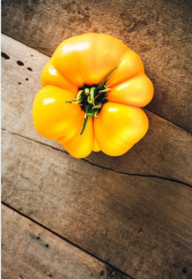 Heirloom Brandywine Yellow Tomato Organic Seed Vegetable image 0