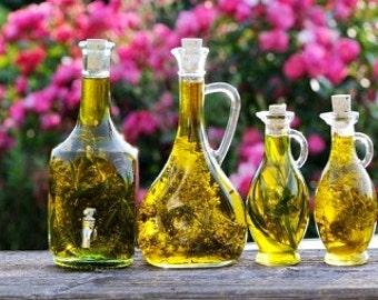 Heirloom Russian Tarragon Medicinal Herb Seed Organic Garden Non Gmo Container Friendly