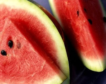 Heirloom  Crimson Sweet Watermelon Seeds Vegetable Garden Organic Seeds Non Gmo