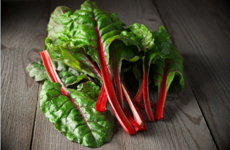 Heirloom Swiss Chard Ruby Red Organic Vegetable Seed Garden image 0