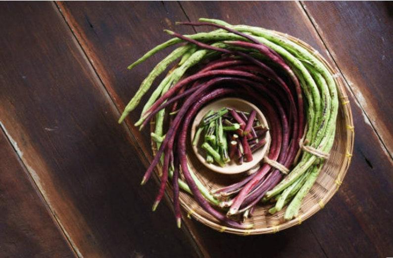 Red Yard Long Bean Heirloom Seeds Vegetable Garden Organic image 0