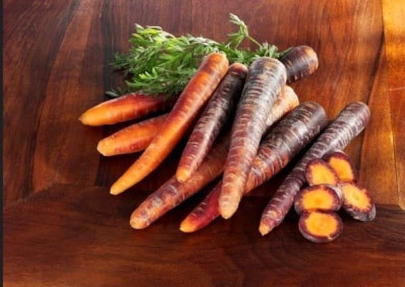Heirloom Cosmic Purple Carrot Vegetable Seed Garden Organic image 0