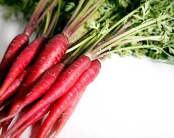 Heirloom Atomic Red Carrot Seeds Vegetable Garden Organic Seed Non Gmo