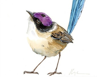 Original Purple Crowned Wren Bird Painting, Bird lover, Birdwatching
