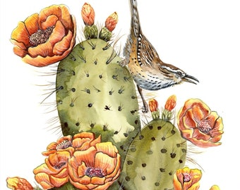 Beautiful Cactus Wren on Blooming Cactus Limited Edition Print