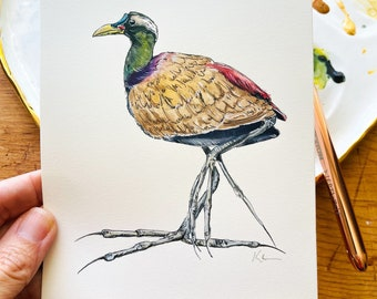 Original Bronzed Winged Jacana Lilly Walker Bird Painting
