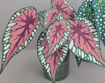 Begonia Rex TEMPLATE SVG (Digital file only)