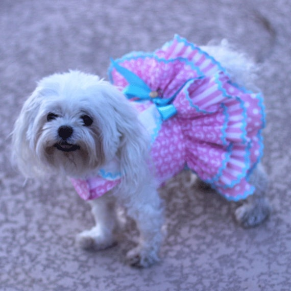 Dog Dress Dog Harness Dress Dog Fashion for Small Dog  d0d6f417f