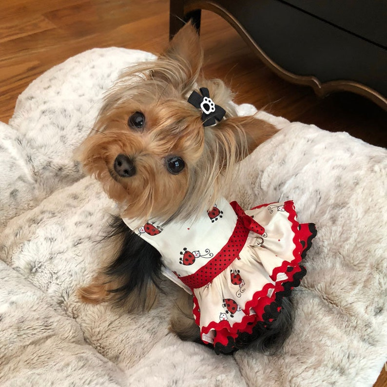 8c4ba3e6a7c8 Dog Dress Custom Made for Spring or Summer  Harness Ruffle