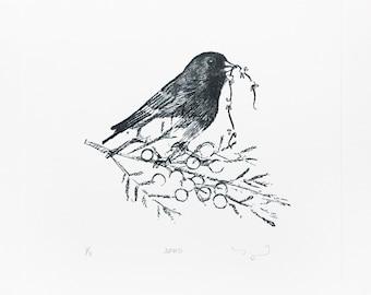 Bird Lovers Letterpress Art Print The Junco