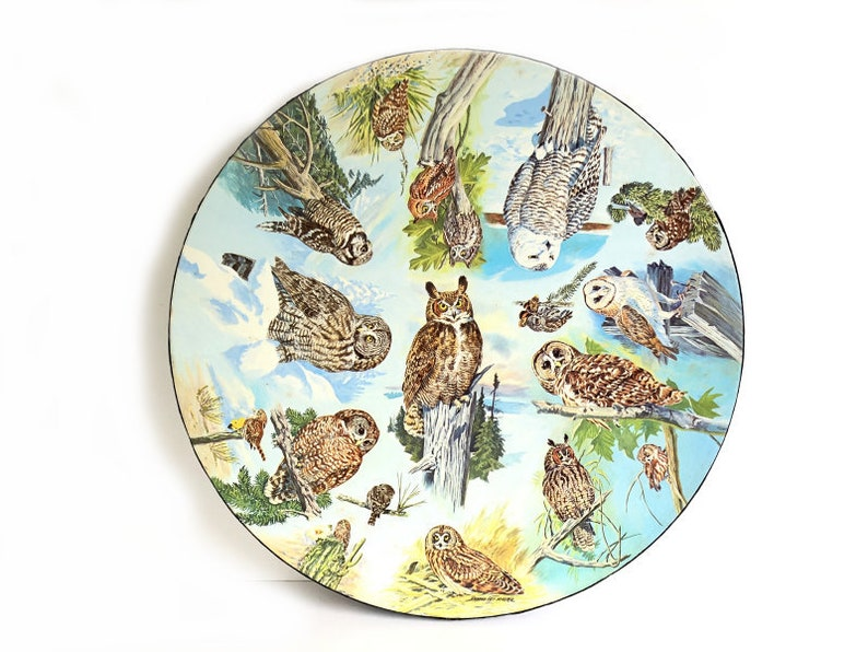 Vintage Owl Jigsaw Puzzle~ SPRINGBOK~ 1973 Circular Round~ Rare find~  Complete