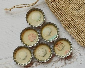Seashell Bottlecap Magnets- Ocean Gift- Upcycled Kitchen Magnets- Nautical Seashell Decor, Strong Fridge Magnets- Ocean Lover Gift