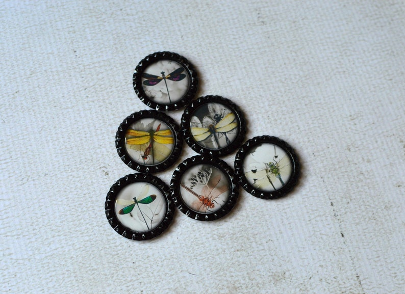 Gift Under 10 Kitchen Magnets Gift For Her Dragonfly Home Decor Asian Inspired Dragonfly Dragonfly Bottlecap Magnets Dragonfly Magnets