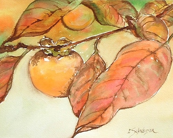 Persimmon - watercolor painting