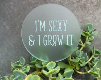 Funny / Quote / Custom Plant Pick / Garden Marker / Punny Plant Stake