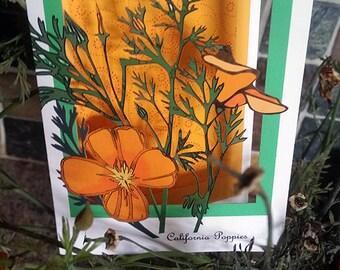 California Poppy (papercut trifold)