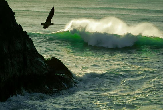 Somber Waves of Green