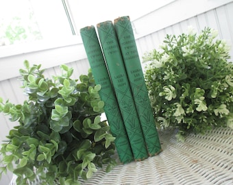 Vintage The Bobbsey Twins Books * Laura Lee Hope * In The Country * At The Seashore