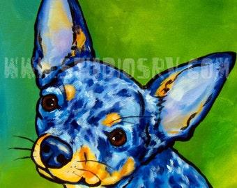 Blue Merle Chihuahua Print 12x12