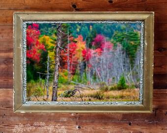 Landscape Photography , Fall Photograph , Rustic Home Decor