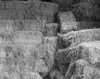 Barn Photograph, Rustic Wall Art, Farm Photography, Fine Art Print, Farmhouse Decor, Photo of New England, Country Life, Rural Scene