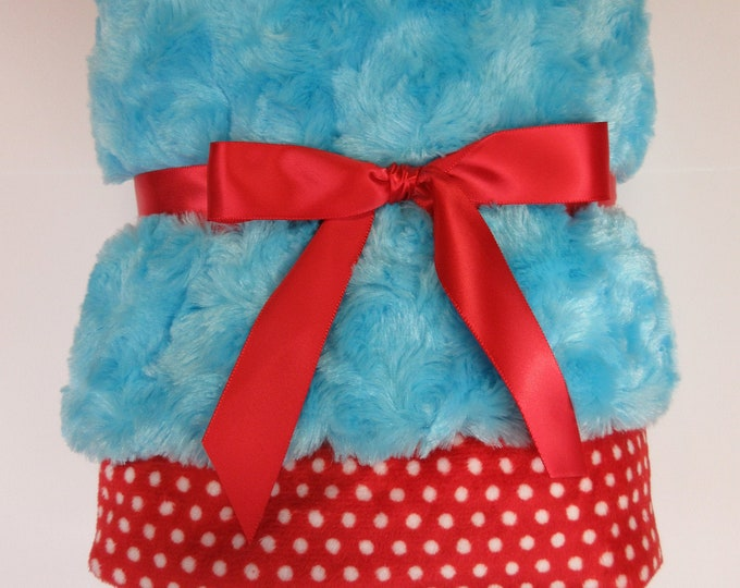 Turquoise with Red and White Swiss Dot Minky Baby Blanket