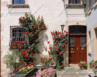 Rothenburg Ob der Tauber in Spring Summer Germany Homestead Floral Roses Fine Art Photography Photo Print