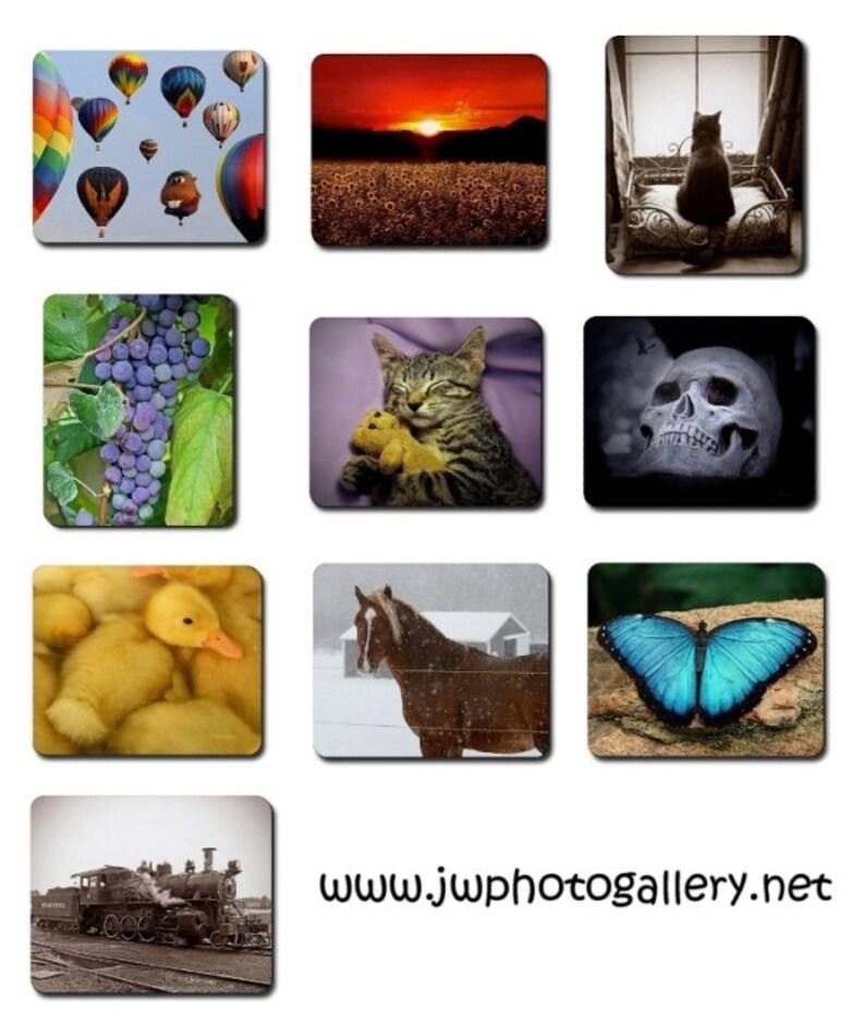 Fine Art Photography Mousepads Spring Summer Fall Autumn image 0