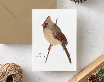 Female Northern Cardinal Note Cards - Blank Cardinal Note Card Set - Cardinal Holiday Cards for Bird Lovers