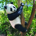 The Naughty Panda Cub Cushion- Free shipping world-wide