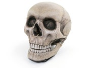 Skull Chair - Free shipping world-wide