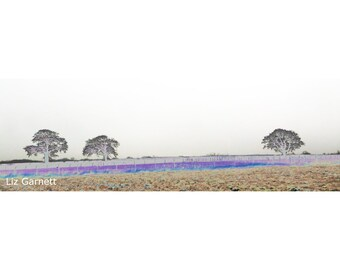 Contemporary Landscape Photograph of Coldblow on the North Downs above Maidstone, Kent, United Kingdom