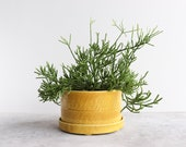 Round Pinched Planter with Plate - Daybreak