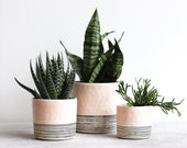 Round Pinched Planter with Stripes - Summer Sweet