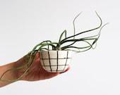 Pinch Bowl - Grid