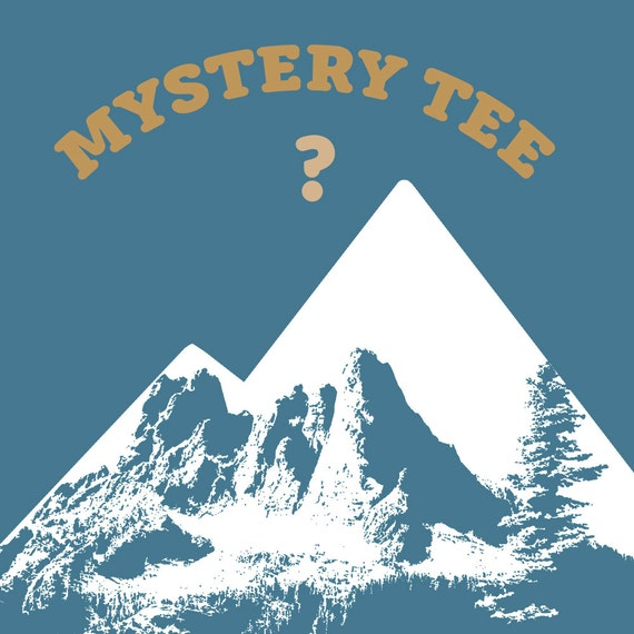 183cd9eb1d999f MYSTERY TEE ships free with another item Mens or