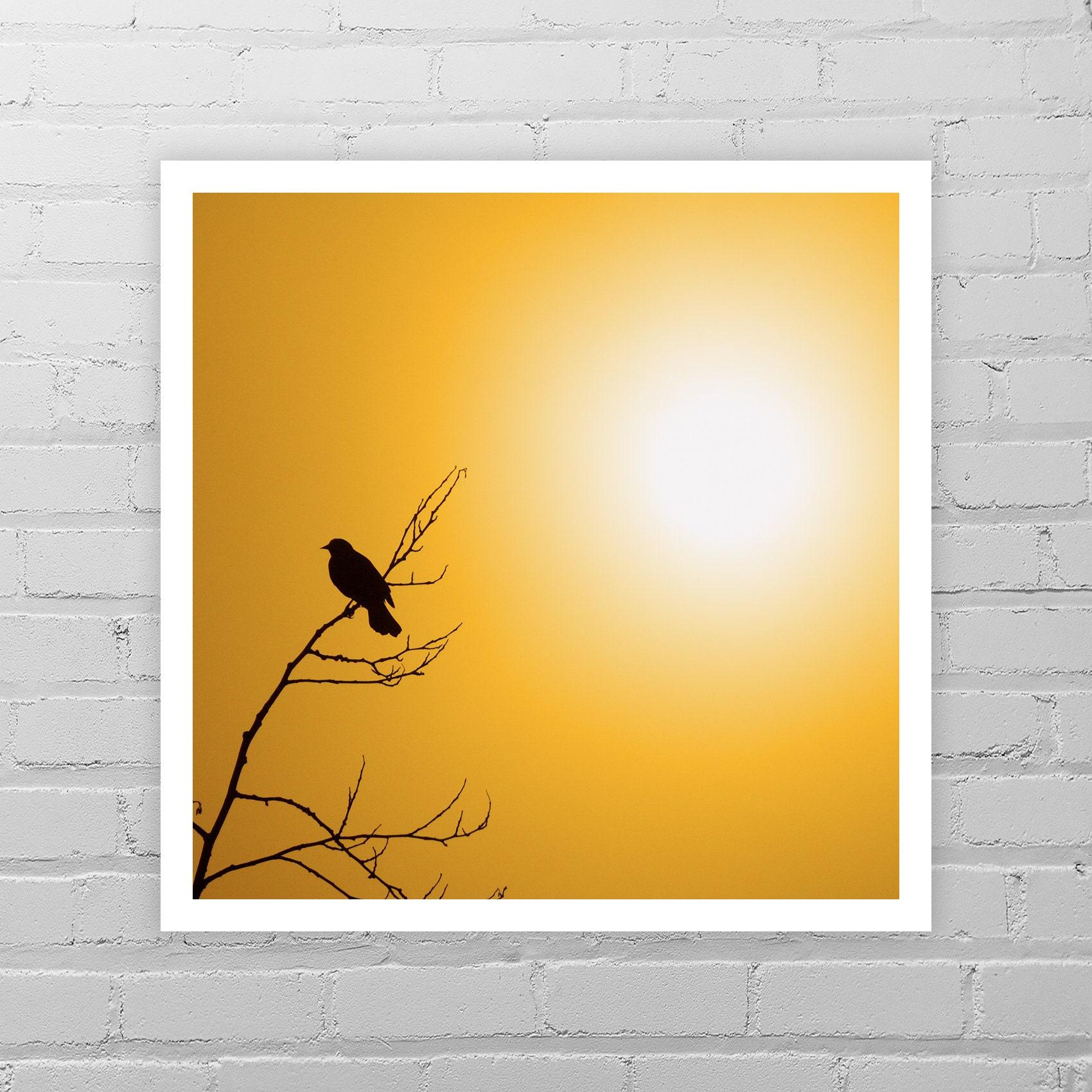 Nature Photography Good Morning Sunshine Yellow   Etsy