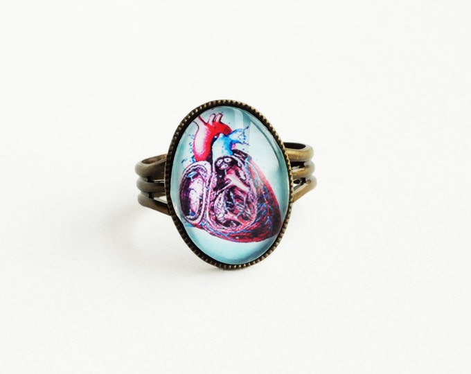 Anatomical Heart Ring Medical Diagram Glass Cabochon Adjustable Ring Science Jewelry Anatomical Heart Jewelry Geek Gifts For Women