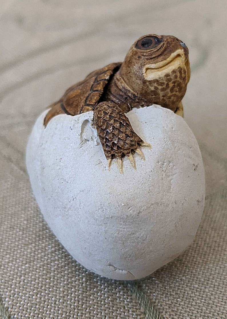 Baby Turtle Hatching from Egg..hand crafted ceramic.signed