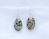 Wire Wrapped Dalmatian Jasper Earrings