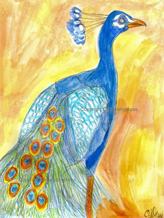 Peacock Drawing Peacock Art Peacock Decor Colored Etsy