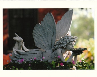 Fairy Photo Note Cards -- Set of TEN