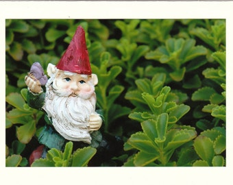 Garden Gnome Photo Note Cards - Set of TEN