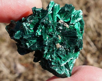 Malachite #30 ~ ONE High Quality Extra Small Raw Fibrous African Malachite Crystal Mineral Specimen ~ 0.5 - 1 Ounces ~ 1.25 Inch
