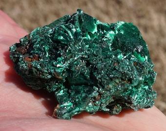 Malachite #51 ~ ONE High Quality Medium Raw Fibrous African Malachite Crystal Mineral Specimen ~ 2.25 Ounces ~ 2 Inch